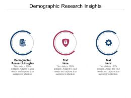 Demographic Research Insights Ppt Powerpoint Presentation Show Gallery Cpb