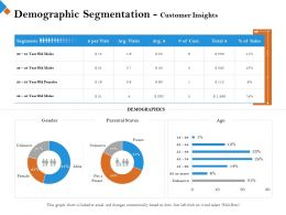 Demographic Segmentation Customer Insights Age M2445 Ppt Powerpoint Presentation Images