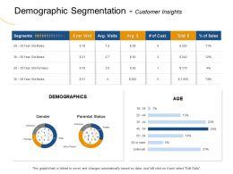 Demographic Segmentation Customer Insights Cust Ppt Powerpoint Presentation Show Inspiration