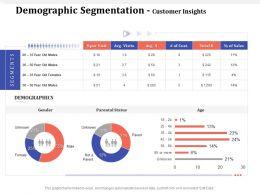 Demographic Segmentation Customer Insights M1621 Ppt Powerpoint Presentation Slides