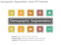 Demographic Segmentation Good Ppt Example