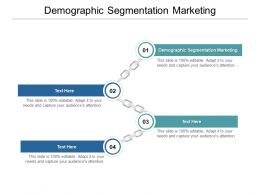 Demographic Segmentation Marketing Ppt Powerpoint Presentation Icons Cpb