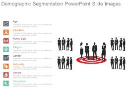 Demographic Segmentation Powerpoint Slide Images