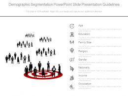 Demographic Segmentation Powerpoint Slide Presentation Guidelines