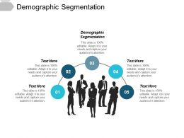 Demographic Segmentation Ppt Powerpoint Presentation File Background Image Cpb