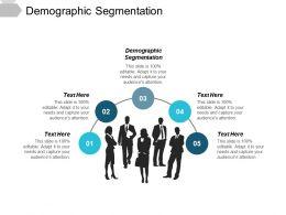 Demographic Segmentation Ppt Powerpoint Presentation File Background Image Cpb