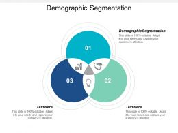 Demographic Segmentation Ppt Powerpoint Presentation File Objects Cpb