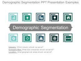 Demographic Segmentation Ppt Presentation Examples