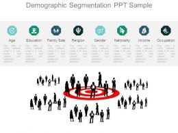 Demographic Segmentation Ppt Sample