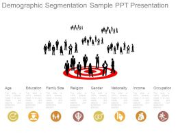 Demographic Segmentation Sample Ppt Presentation