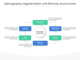 Demographic Segmentation With Ethnicity And Income