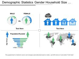 Demographic Statistics Gender Household Size Population