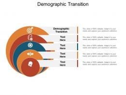 Demographic Transition Ppt Powerpoint Presentation Summary Layout Ideas Cpb