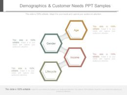 Demographics And Customer Needs Ppt Samples