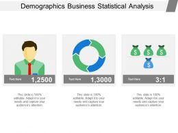 Demographics Business Statistical Analysis