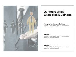 Demographics Examples Business Ppt Powerpoint Presentation Gallery Samples Cpb