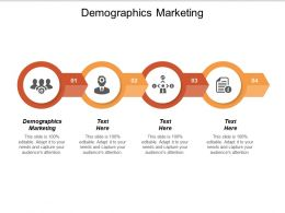Demographics Marketing Ppt Powerpoint Presentation File Graphics Pictures Cpb