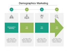 Demographics Marketing Ppt Powerpoint Presentation File Sample Cpb