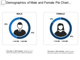 Demographics Of Male And Female Pie Chart Showing Percentage