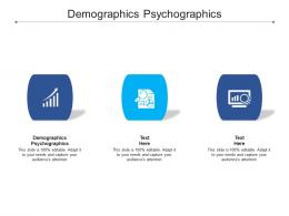 Demographics Psychographics Ppt Powerpoint Presentation Professional Slide Cpb