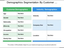 Demographics Segmentation By Customer Preferences And Industry Size