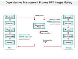Dependencies Management Process Ppt Images Gallery