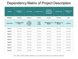 Dependency Matrix Of Project Description