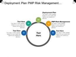 Deployment Plan Pmp Risk Management Monthly Performance Report Cpb