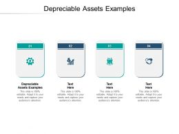 Depreciable Assets Examples Ppt Powerpoint Presentation Infographic Template Deck Cpb