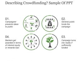 Describing Crowdfunding Sample Of Ppt