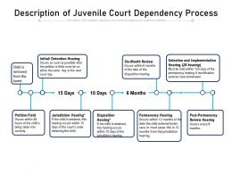 Description Of Juvenile Court Dependency Process