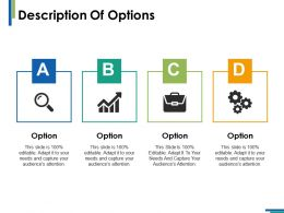 Description Of Options Ppt Infographics Example Introduction