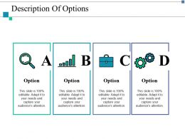 Description Of Options Ppt Layouts Example Introduction