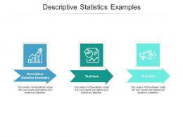 Descriptive Statistics Examples Ppt Powerpoint Presentation File Introduction Cpb