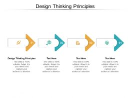 Design Thinking Principles Ppt Powerpoint Presentation File Influencers Cpb