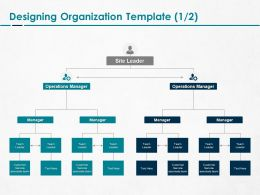 Designing Organization Manager Ppt Powerpoint Presentation Styles