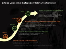 Detailed Levels Within Strategic Cost Optimization Framework Ppt Deck
