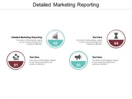 Detailed Marketing Reporting Ppt Powerpoint Presentation Portfolio Model Cpb