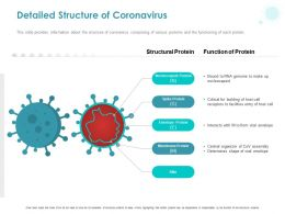 Detailed Structure Of Coronavirus Ppt Powerpoint Presentation Show Graphics Example