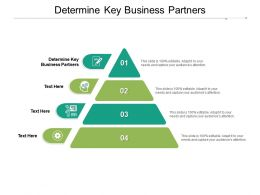 Determine Key Business Partners Ppt Powerpoint Presentation Summary Cpb
