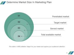 Determine Market Size In Marketing Plan Powerpoint Slide Background Picture