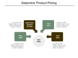 Determine Product Pricing Ppt Powerpoint Presentation Infographic Template Shapes Cpb