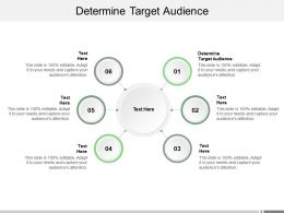 Determine Target Audience Ppt Powerpoint Presentation Styles Demonstration Cpb