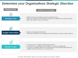 Determine Your Organizations Strategic Direction Information Ppt Powerpoint Presentation Outline Show