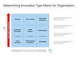 Determining Innovation Type Matrix For Organization