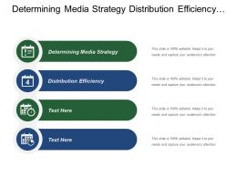 Determining Media Strategy Distribution Efficiency Change Purchase Criteria