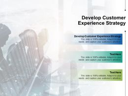 Develop Customer Experience Strategy Ppt Powerpoint Presentation Inspiration Vector Cpb
