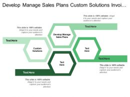 Develop Manage Sales Plans Custom Solutions Invoice Customer