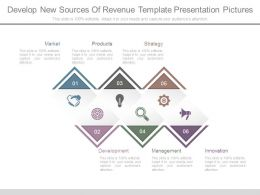 Develop New Sources Of Revenue Template Presentation Pictures