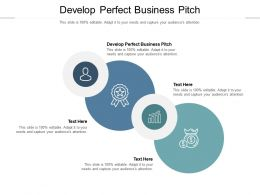 Develop Perfect Business Pitch Ppt Powerpoint Presentation Model Files Cpb